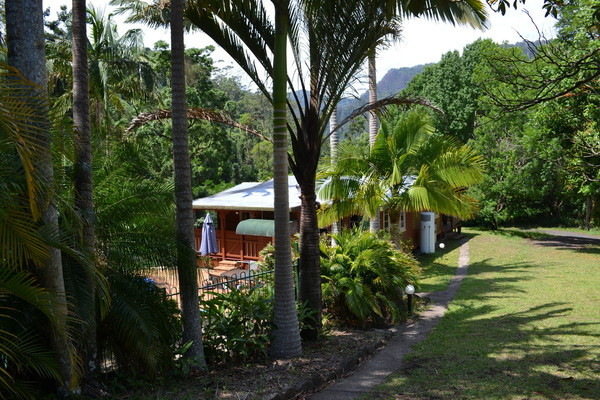 Guesthouse - Nimbin photo